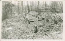 Cmentarz ewangelicki w Mrągowie 1993