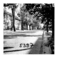 [Ulica Warszawska w Olsztynie. 2]