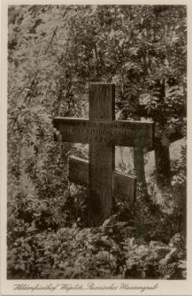 Heldenfriedhof Waplitz, Russisches Massengrab