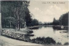 Lötzen, O.- Pr. - Partie im Stadtwald