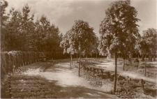 Osterode i. Ostpr. Ehrenfriedhof